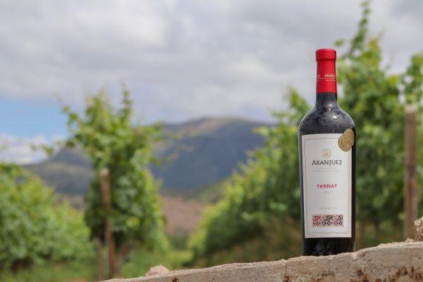Aranjuez-Vineyard-Tannat-Bottle-2017